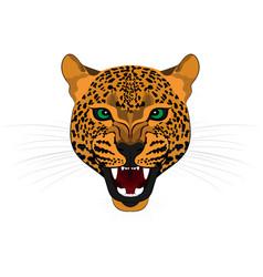 Head roaring jaguar vector