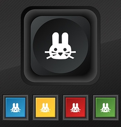 Rabbit icon symbol Set of five colorful stylish vector image