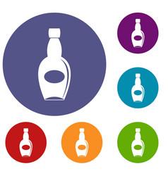 big bottle icons set vector image vector image
