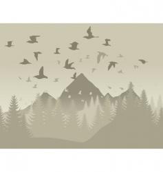 birds in mountains vector image vector image