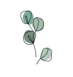 eucalyptus branch in modern single line art style vector image