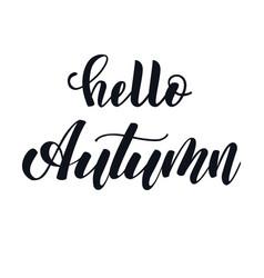 hello autumn hand lettering phrase vector image