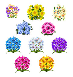 Set patterns with colorful bouquets flowers vector