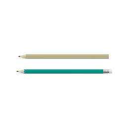 two wooden pencil with graphite leads vector image