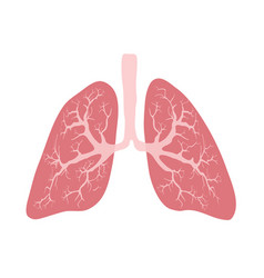 Virus lung infection medicine medical disease vector