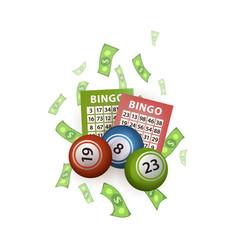 flat bingo lottery balls tickets money vector image vector image