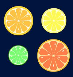 set of slices of orange lemon lime grapefruit vector image vector image
