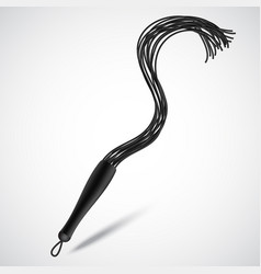 black leather whip for sadomasochism bondage and vector image