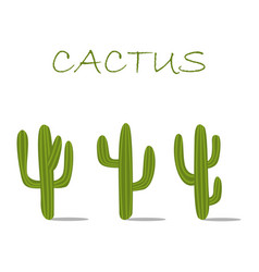 Cactuses set icon vector