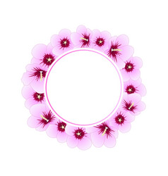 hibiscus syriacus - rose of sharon banner wreath vector image