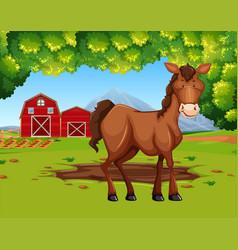 Horse in the farmland vector