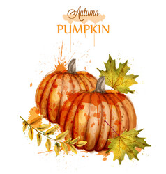 Pumpkin watercolor autumn background fall vector