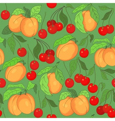 seamless pattern with cherries and apricots vector image