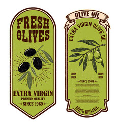 set fresh olive oil labels design element vector image