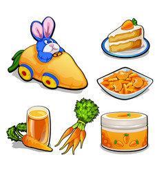 the set of items on the topic of carrots isolated vector image