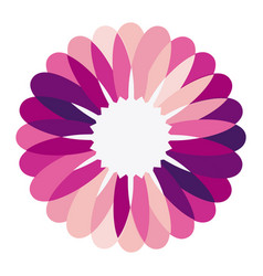 purple circular frame formed by petals with white vector image vector image