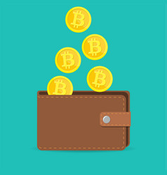 brown bitcoin wallet with coins vector image