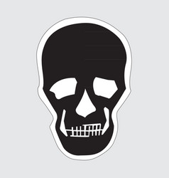 image of a human skull vector image vector image
