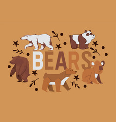 bear wild animal character brown grizzly vector image