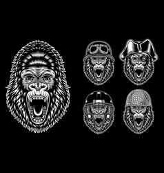 Collection angry gorilla characters vector