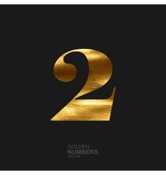 Golden number 2 vector image