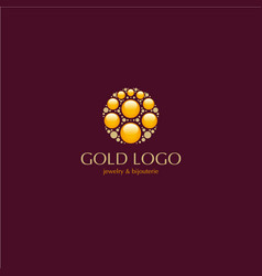 jewelry beauty gold logo vector image