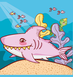 nice shark with fishes animals and plants vector image