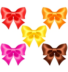 Silk bows in warm colors vector image