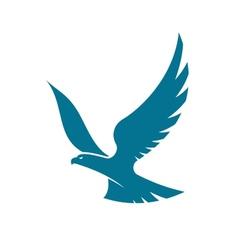 Graceful flying eagle vector image vector image