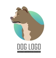 Bullmastiff Dog Logo on White Background vector image