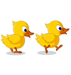 cute two baby duck cartoon walking vector image
