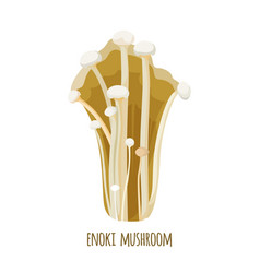 enoki mushrooms enokitake enokidake long thin vector image