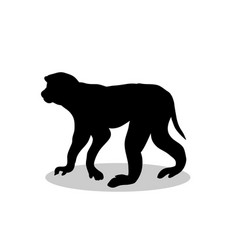 Macaque monkey primate black silhouette animal vector