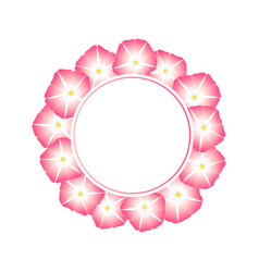 Pink morning glory flower banner wreath vector