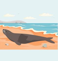Representative oceanic wildlife liying on vector