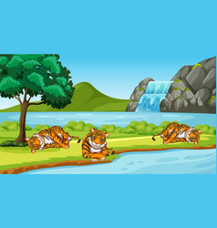 Scene with wild tigers in park vector