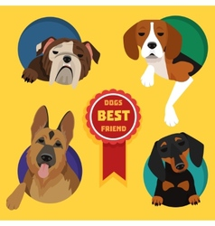 Set of different dog breeds vector image