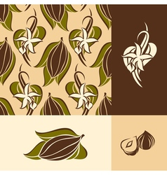 Cocoa bean with leaves and vanilla flower with pod vector