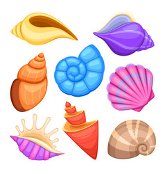 ocean cockleshells cartoon sea shells vector image