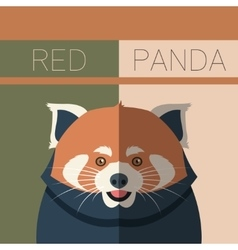 Red Panda flat postcard vector image