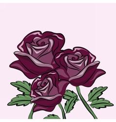 Roses flower background vector