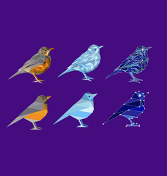 set of birds in polygon style vector image vector image