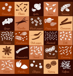 spices hand drawn big icon squared set vector image vector image