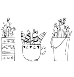 hand drawn of set vintage cactus flowers in the vector image