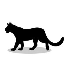 lioness wildcat predator black silhouette animal vector image