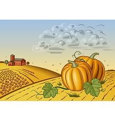 Pumpkin harvest landscape vector image vector image