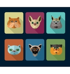 Big set of icons of cats vector image