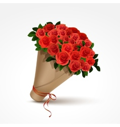 bouquet red roses isolated vector image