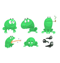 collection funny green frog with various vector image