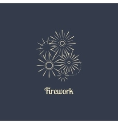 Firework company logo on dark background vector image